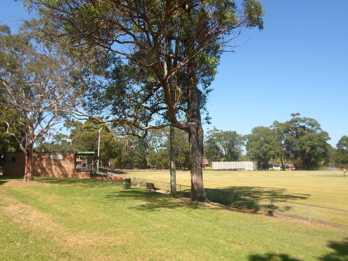 asquith park, asquith oval, asquith playground, asquith park