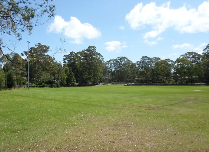 bannockburn oval, pymble, sports grounds, parks, kids