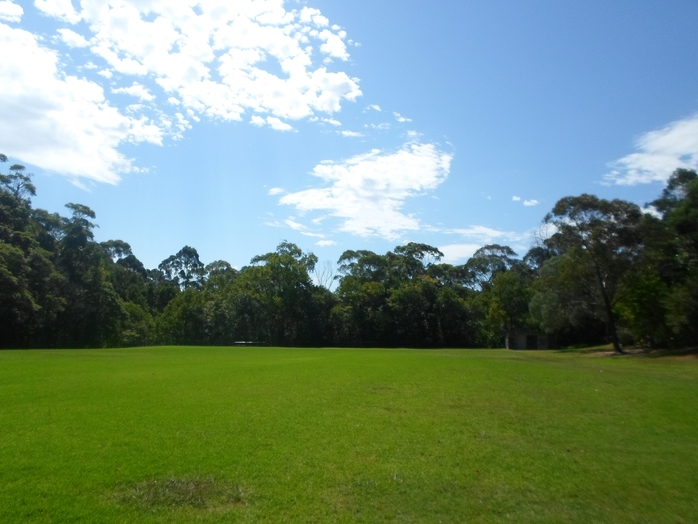 carrington park, wahroonga park, wahroonga oval, wahroonga soccer, carrington park wahroonga, wahroonga cricket