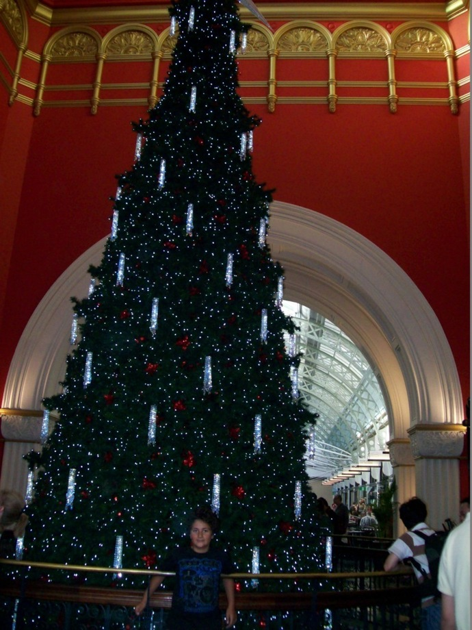 Christmas, decorations, Queen Victoria Building, Sydney CBD, Santa