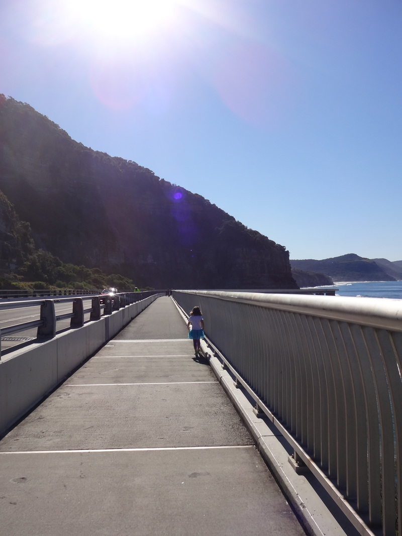 Grand Pacific Drive copyright Lydia C. Lee  - Grand Pacific Drive - Easy Day Trip