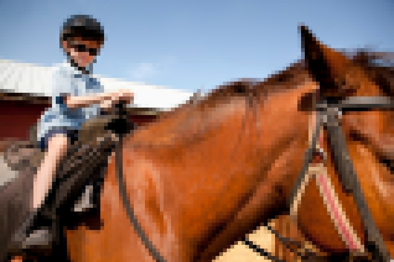 Horseriding  - 5 Activities To Enjoy With Kids In Sydney These School Holidays