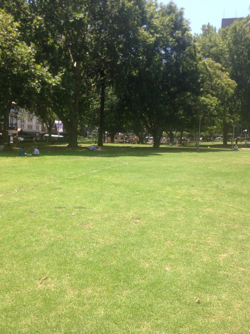 hyde park sydney, sydneys hyde park, hyde park for kids, hyde park sydney for kids  - Hyde Park Sydney For Kids