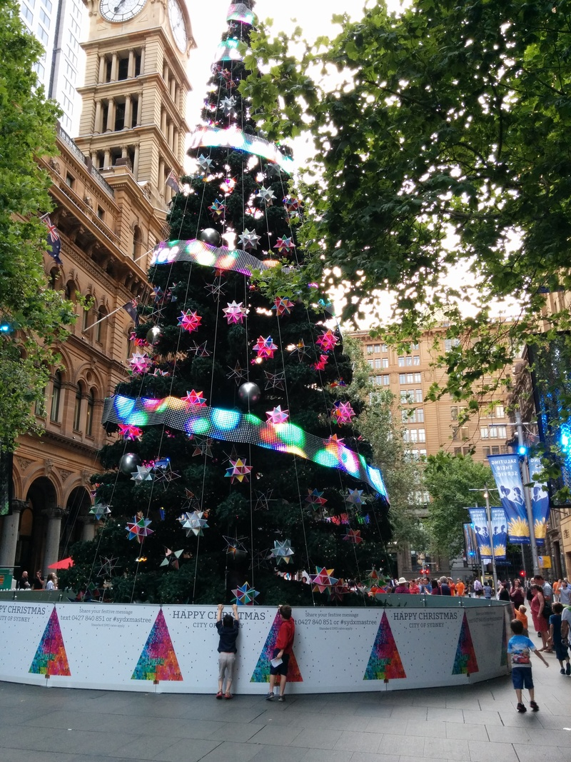 A Christmas Tree Hunt in the Sydney CBD