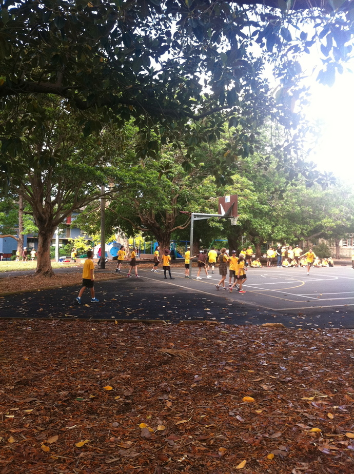 kid friendly activities in balmain, gladstone park