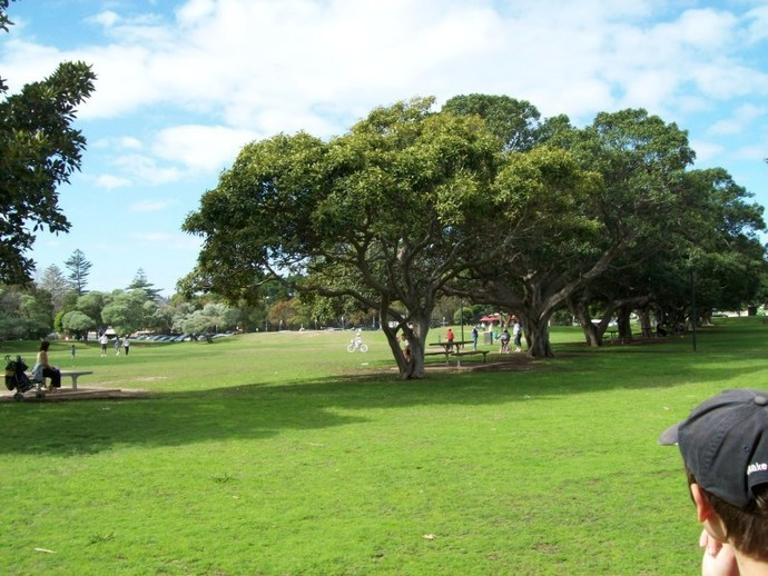 Lyne Park, Rose Bay, Park, Playground