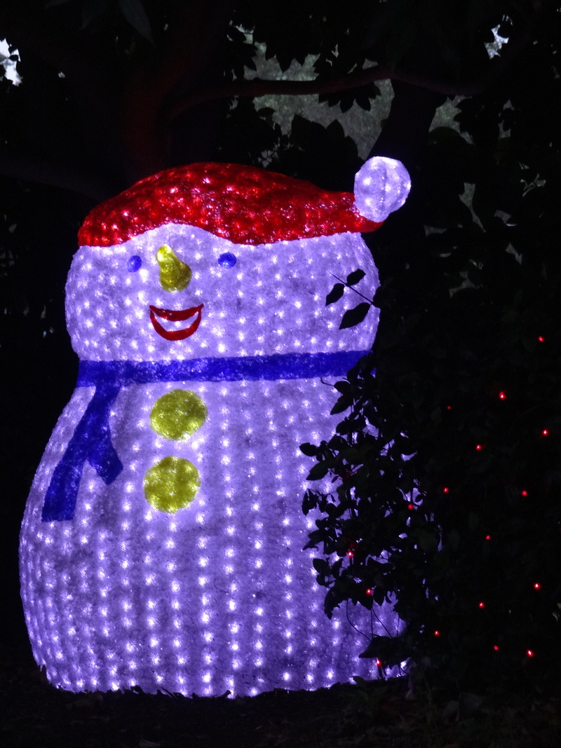 Santa (Copyright Lydia C. Lee)