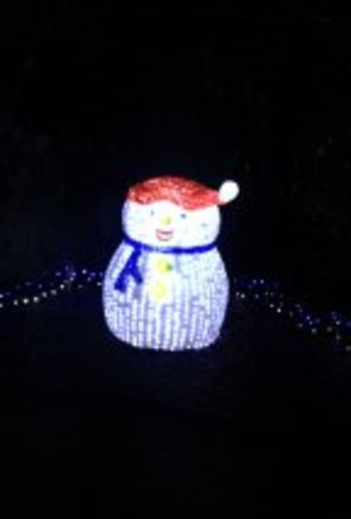 Snowtime in the Hunter Valley Gardens - Lights