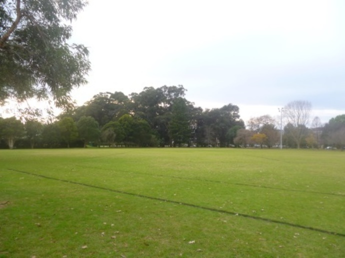 st ives village green, william cowan oval, st ives