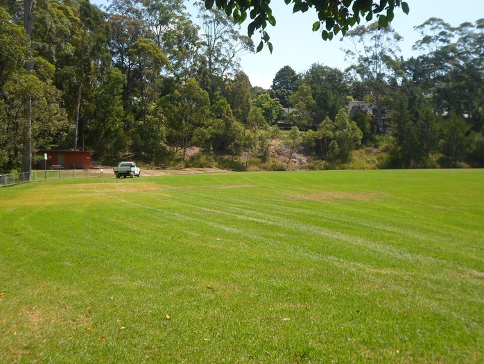 the glade reserve, the glade reserve wahroonga, the glade wahroonga, wahroonga park, ku-ring-gai family park, the glade, the glade oval